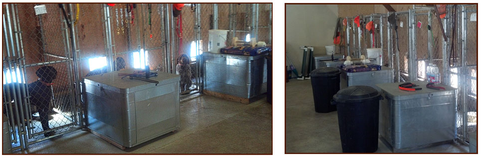 Heated kennels with outside dog run and indoor training area